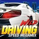 WILD DRIVING -SPEED MEGAMIX-/Various Artists