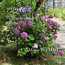 アジサイの花/Music Box MAO