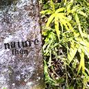nature/than