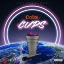 CUPS/CzTIGER
