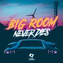Big Room Never Dies/Various Artists