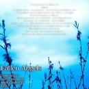 Fallen Angels/Naoya Sakamata