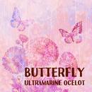 Butterfly/Ultramarine Ocelot