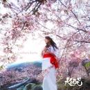 桜香る/KAO=S