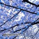 memories/小林由宜