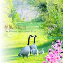 春風の伝言 ~528Hz Peaceful Piano~/Yuusuke