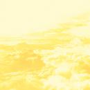 Yellow/RAY