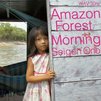 Amazon Forest Morning 30 [192kHz]