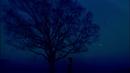 六等星の夜/Aimer
