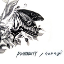 sanagi/POSSIBILITY