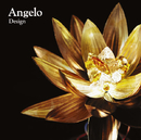 Design/Angelo