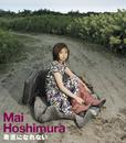 素直になれない/Mai Hoshimura