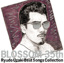 BLOSSOM-35th ~宇崎竜童ベスト・ソングス・コレクション/宇崎竜童