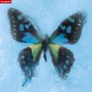 アゲハ蝶/ポルノグラフィティ