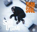 Soul Dreamer/TARO SOUL