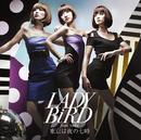東京は夜の七時/LADY BiRD feat. yula.