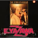 THE STAR IN HIBIYA/矢沢永吉