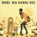 BHB3/BIG HORNS BEE
