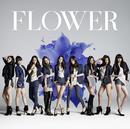 Still(Christmas version)/Flower