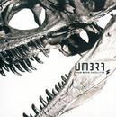 UMBRA/BOOM BOOM SATELLITES
