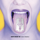 SIAM SHADE VIII B-side Collection/SIAM SHADE