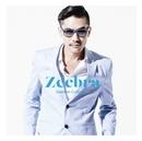 Endless Summer Feat. Coma-Chi SONPUB Remix/Zeebra