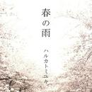春の雨/ハルカトミユキ