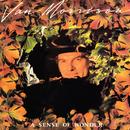 A Sense of Wonder/Van Morrison