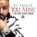 You Mine feat.Trey Songz,Jeremih,Future/DJ Khaled