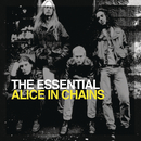 The Essential Alice In Chains/Alice In Chains