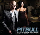 Shut It Down/Pitbull