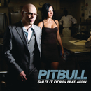 Shut It Down feat.Akon/Pitbull