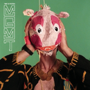 Time To Pretend/MGMT