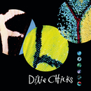 Fly/Dixie Chicks