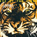 Eye Of The Tiger/Survivor