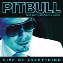 Give Me Everything feat.Ne-Yo,Afrojack,Nayer/Pitbull