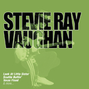 Collections/Stevie Ray Vaughan