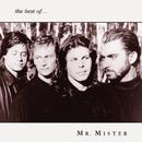 The Best of Mr. Mister/Mr. Mister