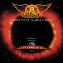 I Don't Want To Miss A Thing/Aerosmith