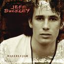 Hallelujah (Live at Bearsville)/Jeff Buckley