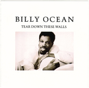 Tear Down These Walls/Billy Ocean