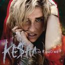 We R Who We R (Fred Falke Radio Mix)/KE$HA