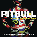 International Love (Clinton Sparks & Disco Fries Remix) feat.Chris Brown/Pitbull