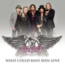 What Could Have Been Love/Aerosmith