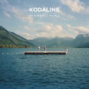 In A Perfect World/Kodaline