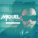 Adorn feat.Jessie Ware/Miguel