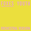 Youth (Orchestral Version)/Foxes