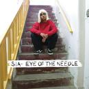 Eye of the Needle/Sia