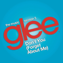 Don't You (Forget About Me) (Glee Cast Version)/Glee Cast