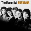 The Essential Survivor/Survivor